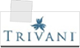 Trivani International video writing